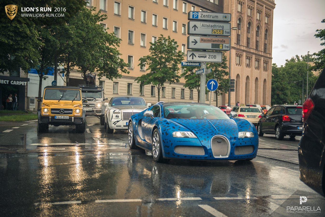 Lions_Run_summer_edition-2015_94