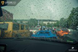 Lions_Run_summer_edition-2015_56