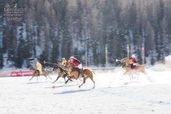 Lions_Run_winter_edition-2016_32-2